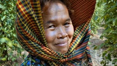 Kampot pepper farmer